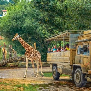 People on Zufari with Giraffe